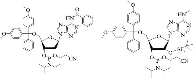 Phosphoramidite